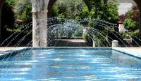 Caltech_gene_pool